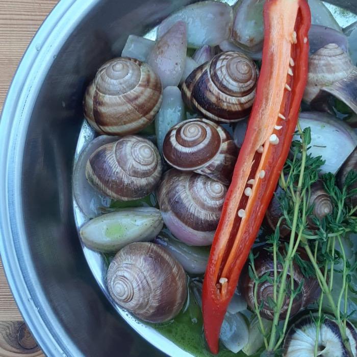 Tereyağlı Salyangoz / Butter Snail QR Online Menü